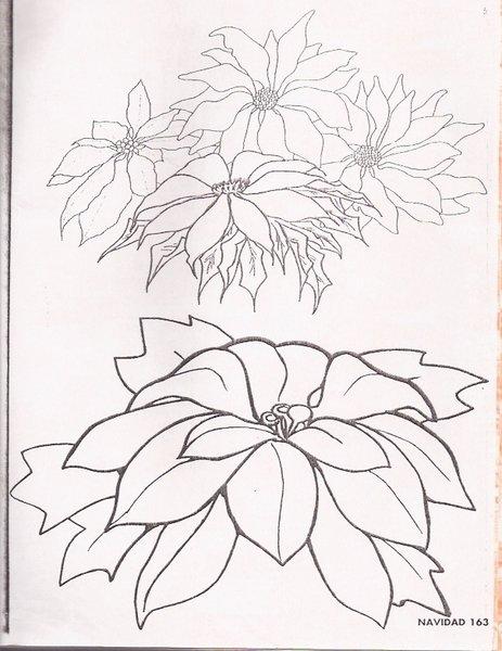 flor1