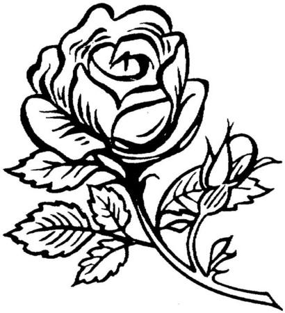 rosa-grande-bella-dibujos-para-colorear